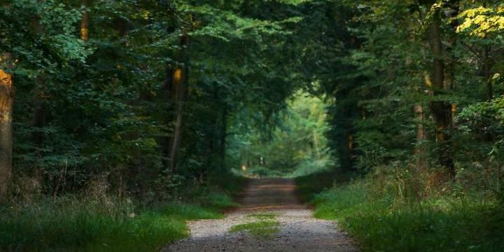 Oplev Glostrup når du rejser i Danmark